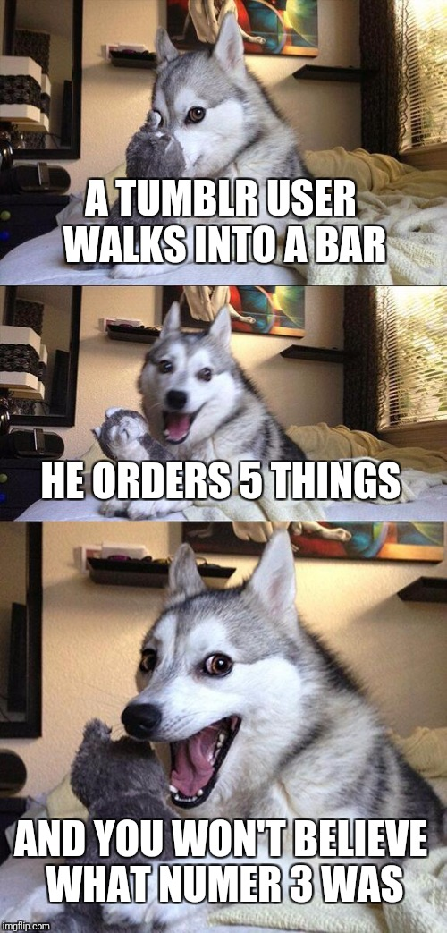 Tumblr | A TUMBLR USER WALKS INTO A BAR HE ORDERS 5 THINGS AND YOU WON'T BELIEVE WHAT NUMER 3 WAS | image tagged in memes,bad pun dog | made w/ Imgflip meme maker