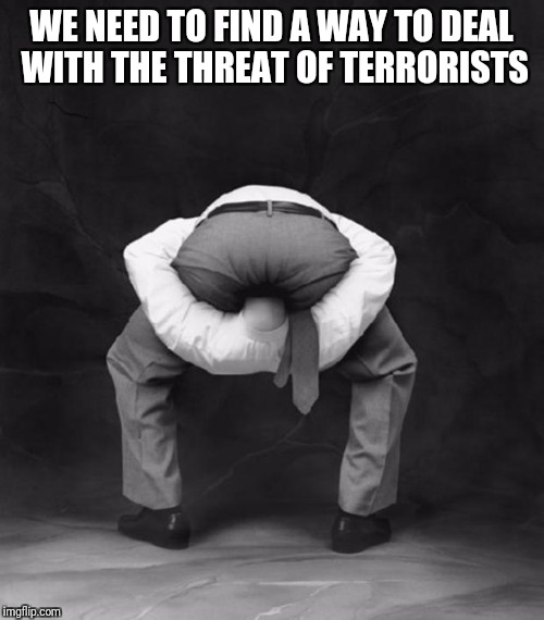 Head Up Ass | WE NEED TO FIND A WAY TO DEAL WITH THE THREAT OF TERRORISTS | image tagged in head up ass | made w/ Imgflip meme maker