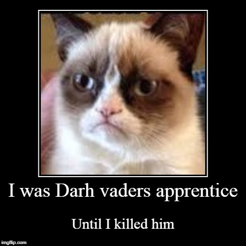 I was Darh vaders apprentice | Until I killed him | image tagged in funny,demotivationals | made w/ Imgflip demotivational maker