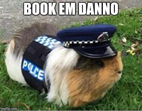 BOOK EM DANNO | made w/ Imgflip meme maker
