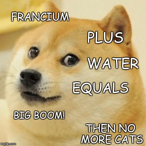 Doge Meme | FRANCIUM PLUS WATER EQUALS BIG BOOM! THEN NO MORE CATS | image tagged in memes,doge | made w/ Imgflip meme maker