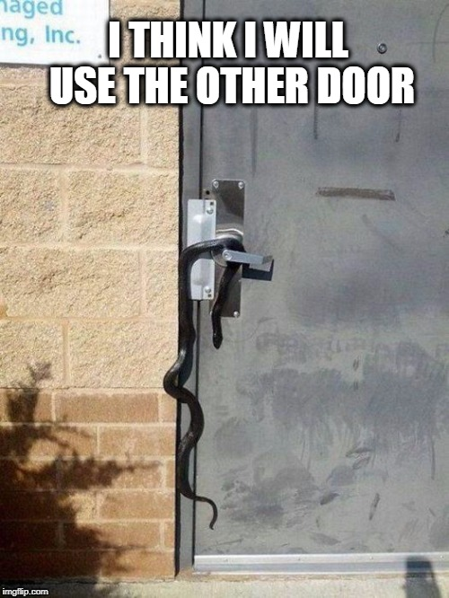 i'll use the other door | I THINK I WILL USE THE OTHER DOOR | image tagged in i'll use the other door | made w/ Imgflip meme maker