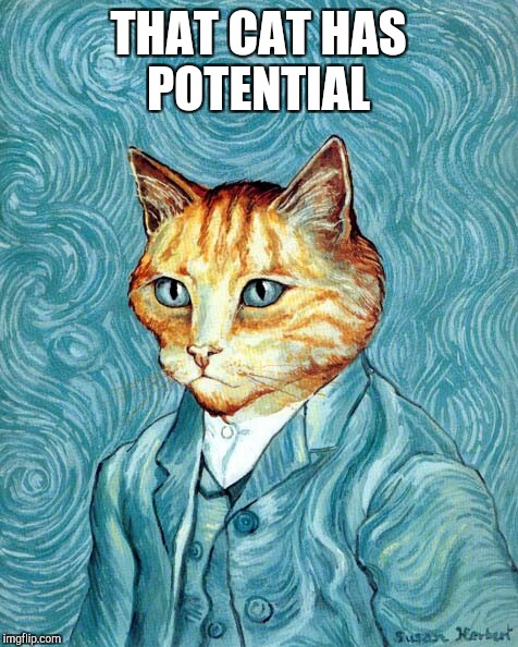 THAT CAT HAS POTENTIAL | made w/ Imgflip meme maker