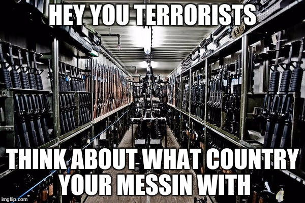 2nd Amendment was always my personal favorite | HEY YOU TERRORISTS THINK ABOUT WHAT COUNTRY YOUR MESSIN WITH | image tagged in die terrorists,guns | made w/ Imgflip meme maker