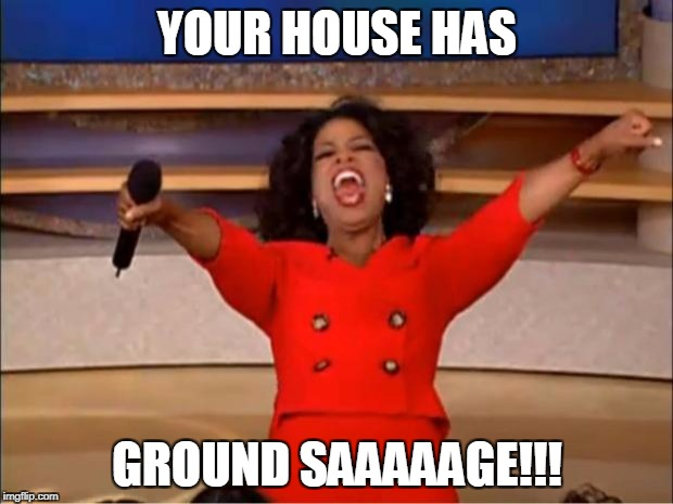 Oprah You Get A Meme | YOUR HOUSE HAS GROUND SAAAAAGE!!! | image tagged in memes,oprah you get a | made w/ Imgflip meme maker