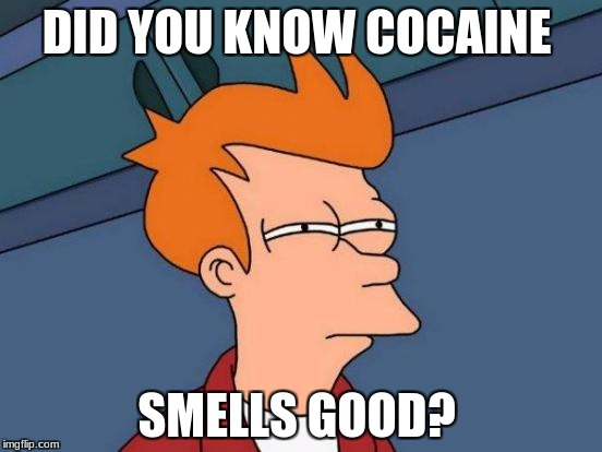 Futurama Fry Meme | DID YOU KNOW COCAINE SMELLS GOOD? | image tagged in memes,futurama fry | made w/ Imgflip meme maker