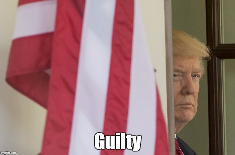Trump Is Guilty | Guilty | image tagged in deplorable donald,despicable donald,dishonorable donald,devious donald,dishonest donald,despotic donald | made w/ Imgflip meme maker