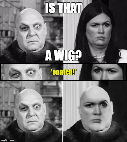 Sarah Festabee Sanders | IS THAT A WIG? *snatch!* | image tagged in sarah huckabee sanders,totally looks like,uncle fester | made w/ Imgflip meme maker