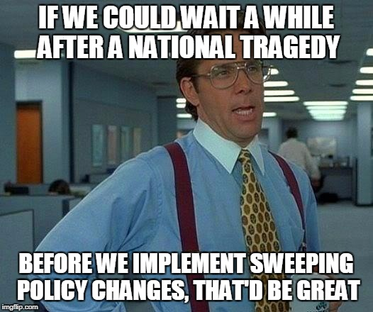 That Would Be Great Meme | IF WE COULD WAIT A WHILE AFTER A NATIONAL TRAGEDY BEFORE WE IMPLEMENT SWEEPING POLICY CHANGES, THAT'D BE GREAT | image tagged in memes,that would be great | made w/ Imgflip meme maker