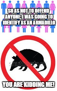 Gender confusion... | SO AS NOT TO OFFEND ANYONE, I WAS GOING TO IDENTIFY AS AN ARMADILLO YOU ARE KIDDING ME! | image tagged in gender confusion,armadillo | made w/ Imgflip meme maker