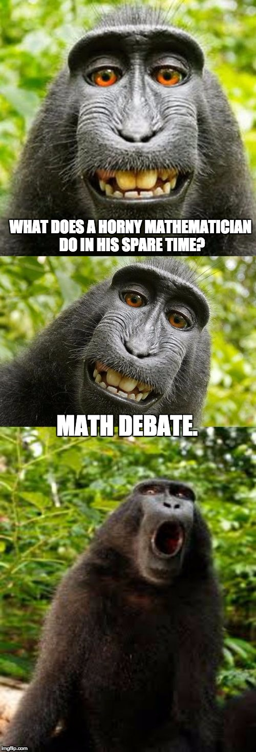 bad pun monkey | WHAT DOES A HORNY MATHEMATICIAN DO IN HIS SPARE TIME? MATH DEBATE. | image tagged in bad pun monkey | made w/ Imgflip meme maker