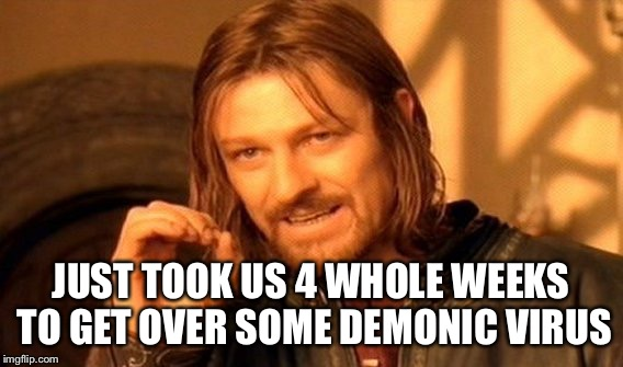One Does Not Simply Meme | JUST TOOK US 4 WHOLE WEEKS TO GET OVER SOME DEMONIC VIRUS | image tagged in memes,one does not simply | made w/ Imgflip meme maker