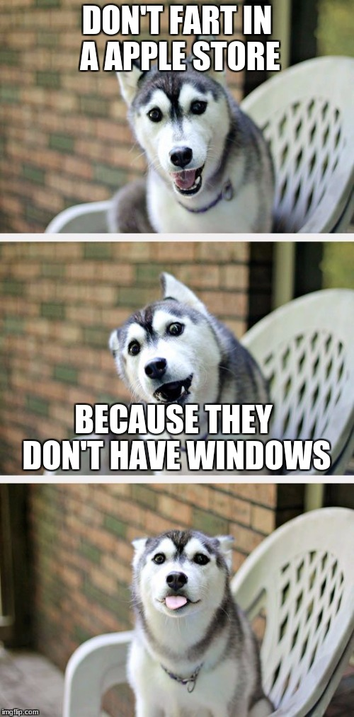 DON'T FART IN A APPLE STORE BECAUSE THEY DON'T HAVE WINDOWS | image tagged in husky puppy | made w/ Imgflip meme maker