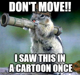 Bazooka Squirrel Meme | DON'T MOVE!! I SAW THIS IN A CARTOON ONCE | image tagged in memes,bazooka squirrel | made w/ Imgflip meme maker