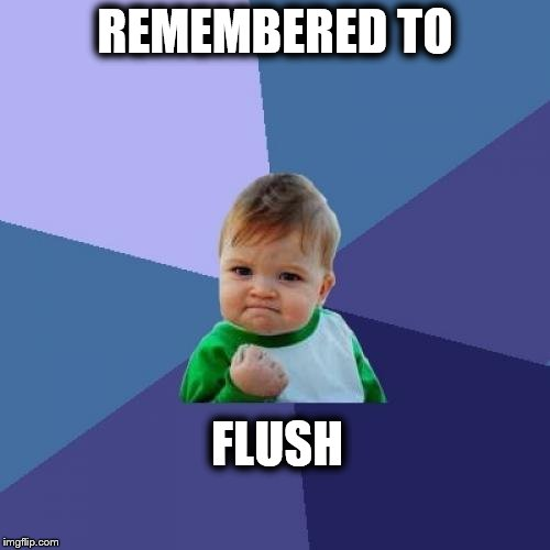 Success Kid Meme | REMEMBERED TO FLUSH | image tagged in memes,success kid | made w/ Imgflip meme maker