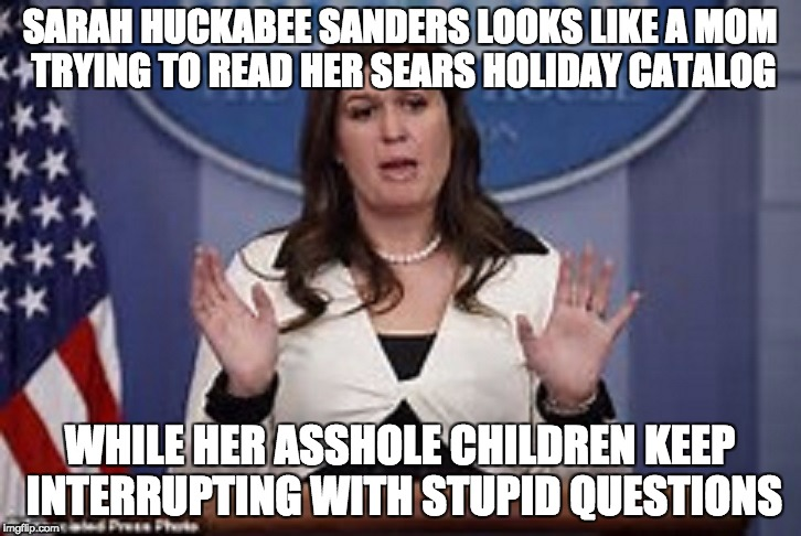 sarah huckabee sanders  | SARAH HUCKABEE SANDERS LOOKS LIKE A MOM TRYING TO READ HER SEARS HOLIDAY CATALOG WHILE HER ASSHOLE CHILDREN KEEP INTERRUPTING WITH STUPID QU | image tagged in sarah huckabee sanders | made w/ Imgflip meme maker