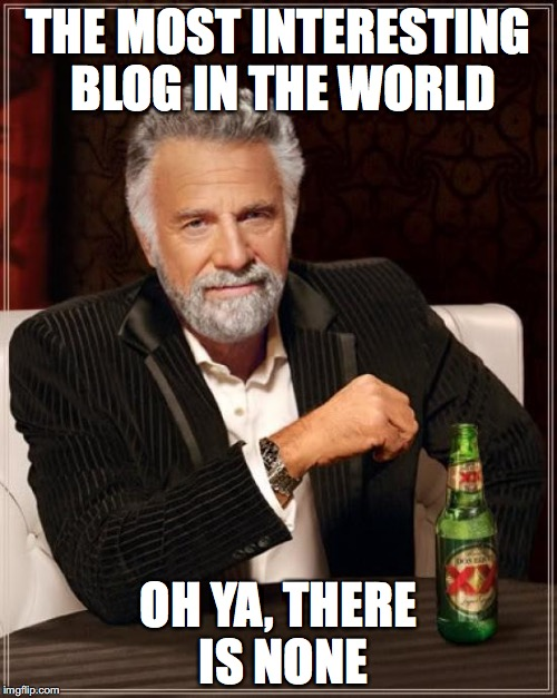 The Most Interesting Man In The World Meme | THE MOST INTERESTING BLOG IN THE WORLD OH YA, THERE IS NONE | image tagged in memes,the most interesting man in the world | made w/ Imgflip meme maker