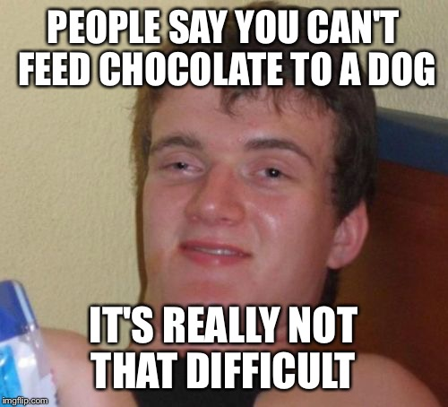 10 Guy Meme | PEOPLE SAY YOU CAN'T FEED CHOCOLATE TO A DOG IT'S REALLY NOT THAT DIFFICULT | image tagged in memes,10 guy | made w/ Imgflip meme maker