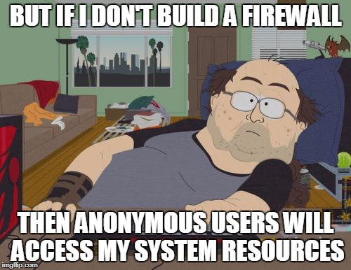 RPG Fan Meme | BUT IF I DON'T BUILD A FIREWALL THEN ANONYMOUS USERS WILL ACCESS MY SYSTEM RESOURCES | image tagged in memes,rpg fan | made w/ Imgflip meme maker