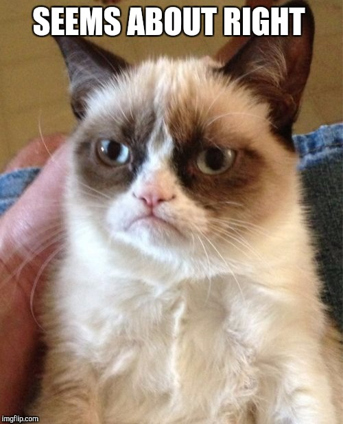 Grumpy Cat Meme | SEEMS ABOUT RIGHT | image tagged in memes,grumpy cat | made w/ Imgflip meme maker