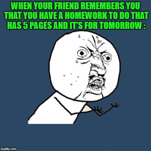 Y U No Meme | WHEN YOUR FRIEND REMEMBERS YOU THAT YOU HAVE A HOMEWORK TO DO THAT HAS 5 PAGES AND IT'S FOR TOMORROW : | image tagged in memes,y u no | made w/ Imgflip meme maker