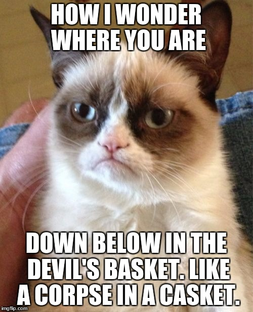 Grumpy Cat Meme | HOW I WONDER WHERE YOU ARE DOWN BELOW IN THE DEVIL'S BASKET. LIKE A CORPSE IN A CASKET. | image tagged in memes,grumpy cat | made w/ Imgflip meme maker