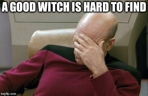 Captain Picard Facepalm Meme | A GOOD WITCH IS HARD TO FIND | image tagged in memes,captain picard facepalm | made w/ Imgflip meme maker