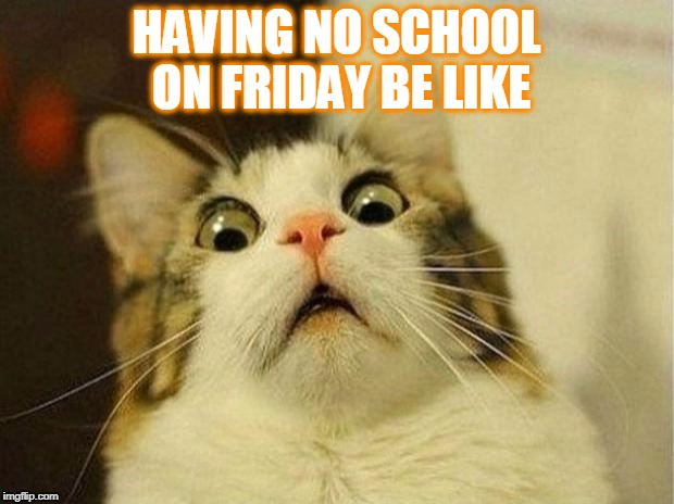 Scared Cat Meme | HAVING NO SCHOOL ON FRIDAY BE LIKE | image tagged in memes,scared cat | made w/ Imgflip meme maker