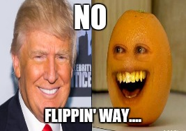 Family Tree Exposed | NO FLIPPIN' WAY.... | image tagged in donald trump,orange,family | made w/ Imgflip meme maker