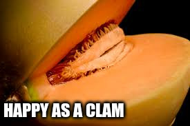 HAPPY AS A CLAM | made w/ Imgflip meme maker