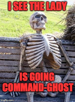 Waiting Skeleton Meme | I SEE THE LADY IS GOING COMMAND-GHOST | image tagged in memes,waiting skeleton | made w/ Imgflip meme maker