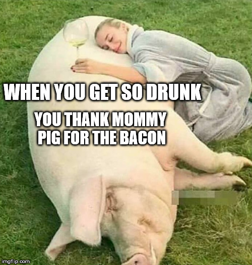 The Cure To A Hang Over | WHEN YOU GET SO DRUNK YOU THANK MOMMY PIG FOR THE BACON | image tagged in memes,drunk,bacon,pig,animals | made w/ Imgflip meme maker
