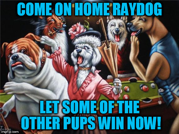Raydog! The early days!  Art Week A JBmemegeek & Sir_Unknown event!! | COME ON HOME RAYDOG LET SOME OF THE OTHER PUPS WIN NOW! | image tagged in art week,jbmemegeek,sir_unknown,tammyfaye,raydog | made w/ Imgflip meme maker