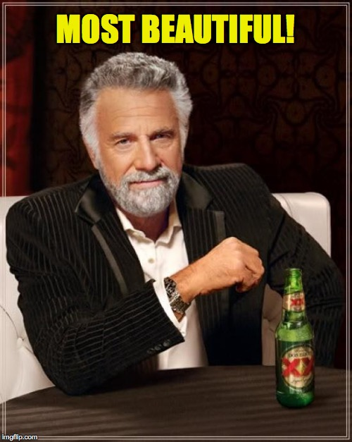 The Most Interesting Man In The World Meme | MOST BEAUTIFUL! | image tagged in memes,the most interesting man in the world | made w/ Imgflip meme maker