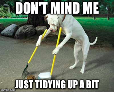 Filthy Little Memers | DON'T MIND ME JUST TIDYING UP A BIT | image tagged in dog janitor | made w/ Imgflip meme maker