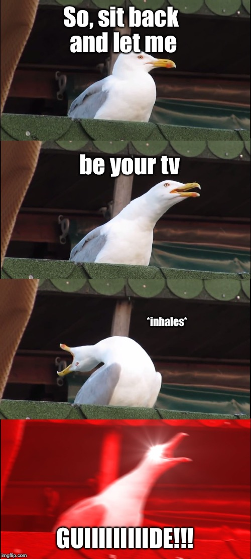 Inhaling Seagull Meme | So, sit back and let me GUIIIIIIIIIDE!!! be your tv *inhales* | image tagged in inhaling seagull | made w/ Imgflip meme maker