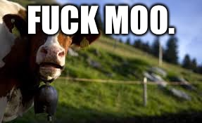 Meet grumpy cats distant cousin; grumpy cow. | F**K MOO. | image tagged in grumpy cow | made w/ Imgflip meme maker
