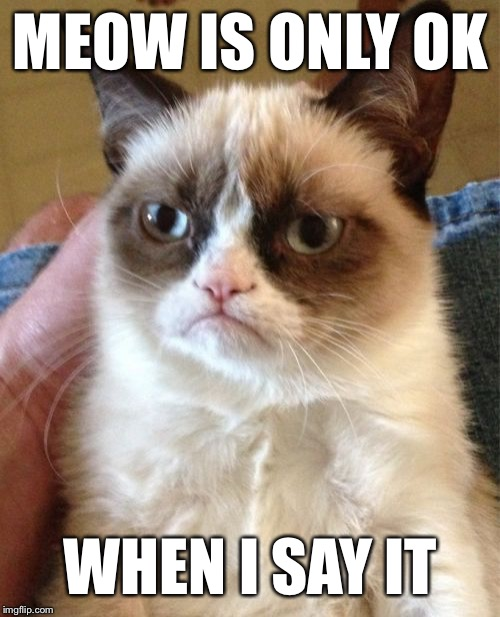 Grumpy Cat Meme | MEOW IS ONLY OK WHEN I SAY IT | image tagged in memes,grumpy cat | made w/ Imgflip meme maker