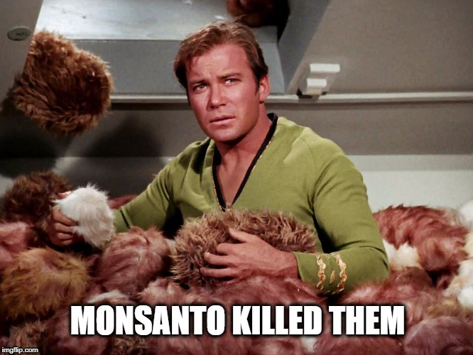 MONSANTO KILLED THEM | image tagged in star trek,tribbles,monsanto,poison | made w/ Imgflip meme maker