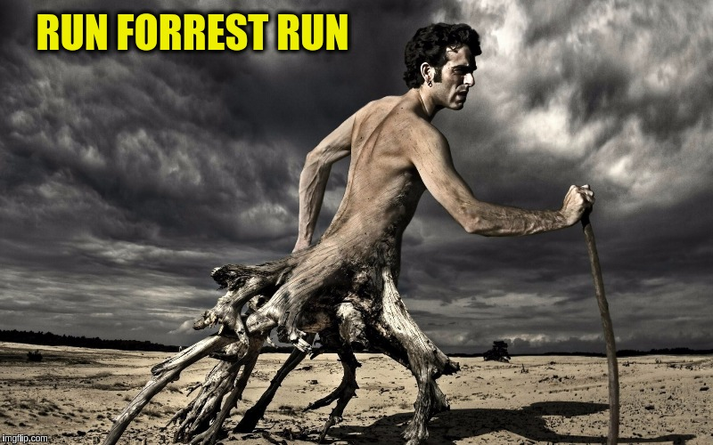 Surreal Forrest Gump | RUN FORREST RUN | image tagged in memes,funny,surreal,funny art,forrest gump | made w/ Imgflip meme maker