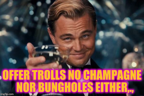Leonardo Dicaprio Cheers Meme | OFFER TROLLS NO CHAMPAGNE   NOR BUNGHOLES EITHER,., | image tagged in memes,leonardo dicaprio cheers | made w/ Imgflip meme maker
