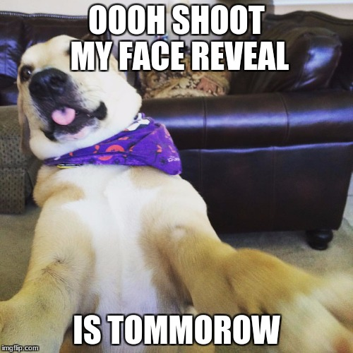 Funny dog meme | OOOH SHOOT MY FACE REVEAL IS TOMMOROW | image tagged in funny dog meme | made w/ Imgflip meme maker