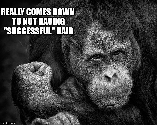 "REALLY COMES DOWN TO NOT HAVING ""SUCCESSFUL"" HAIR 