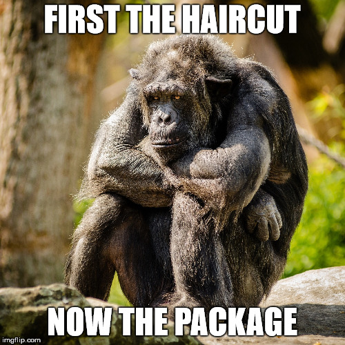 FIRST THE HAIRCUT NOW THE PACKAGE | made w/ Imgflip meme maker