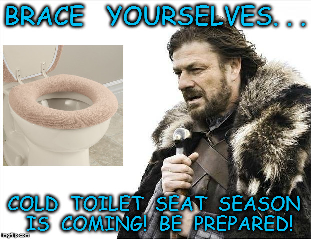 Cushy Seat | BRACE   YOURSELVES. . . COLD  TOILET  SEAT  SEASON  IS  COMING!  BE  PREPARED! | image tagged in memes,brace yourselves x is coming,winter is coming,toilet humor,prepare yourself | made w/ Imgflip meme maker
