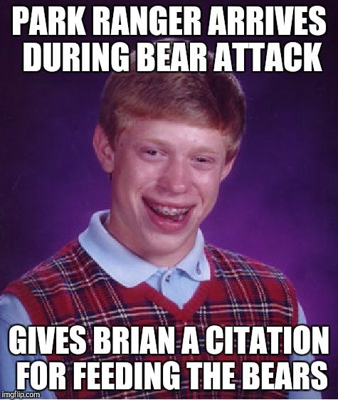 Bad Luck Brian Meme | PARK RANGER ARRIVES DURING BEAR ATTACK GIVES BRIAN A CITATION FOR FEEDING THE BEARS | image tagged in memes,bad luck brian | made w/ Imgflip meme maker