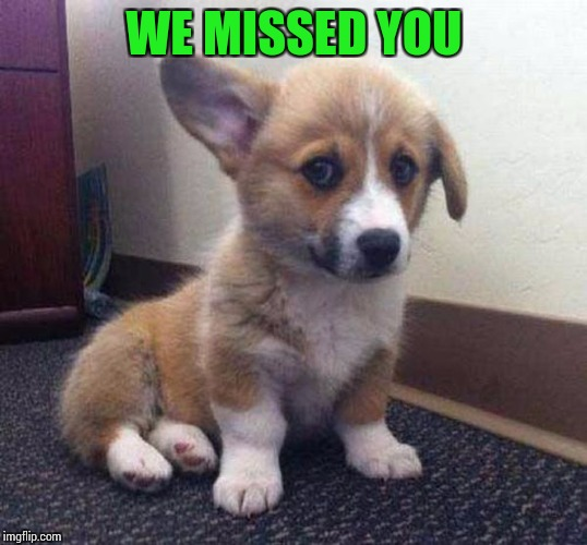 WE MISSED YOU | made w/ Imgflip meme maker