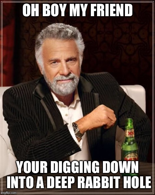 The Most Interesting Man In The World Meme | OH BOY MY FRIEND YOUR DIGGING DOWN INTO A DEEP RABBIT HOLE | image tagged in memes,the most interesting man in the world | made w/ Imgflip meme maker