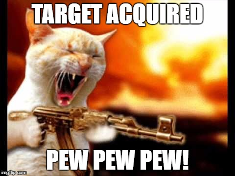 nice kitty... good kitty... | TARGET ACQUIRED PEW PEW PEW! | image tagged in cat with gun,pew pew pew | made w/ Imgflip meme maker