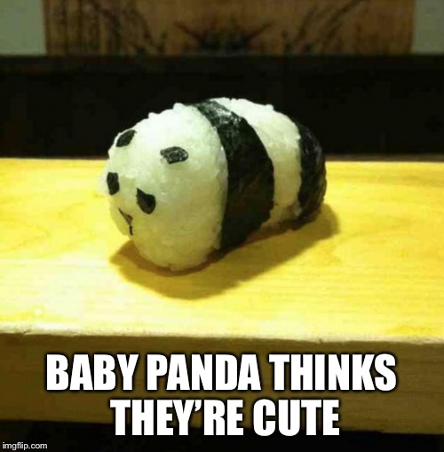 BABY PANDA THINKS THEY'RE CUTE | made w/ Imgflip meme maker